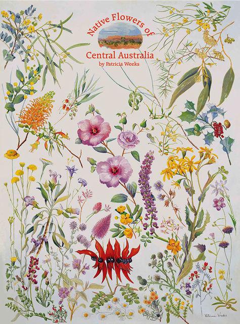 Central australian wild flower art pstr 601 poster of 47 desert flowers of central australia mightylinksfo